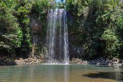 Millaa Millaa Falls in Atherton Tablelands, Australia Stock Images