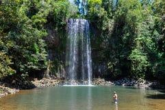 Millaa Millaa Falls in Atherton Tablelands, Australia royalty free stock photos