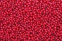 Millares de pasas rojas Fotografía de archivo libre de regalías