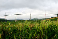 millau viaduct arkivfoto