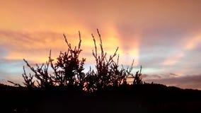 mille couleurs dans le coucher du soleil photo stock