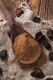 Milled Cola Nut Stock Photography