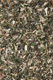Milled nettle tea background Stock Photos