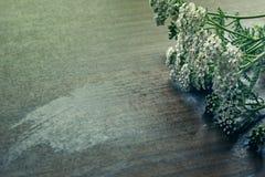Millefeuille sur une table en bois Image stock