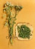 millefoglio Erbe secche Medicina di erbe, fitoterapia medicinale lei Fotografia Stock Libera da Diritti