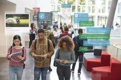 Millennials usando meios sociais foto de stock royalty free