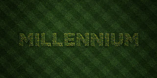 MILLENNIUM - fresh Grass letters with flowers and dandelions - 3D rendered royalty free stock image Stock Images