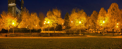 Millennium Park Panorama. The trees and lights in Millennium Park. Chicago, Illinois royalty free stock photo