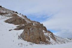 Miller Butte en el refugio nacional de los alces, Jackson Hole, Wyoming foto de archivo
