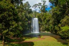 Miller Millaa Falls Fotografía de archivo libre de regalías