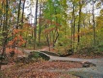 Miller Park Fall Foliage. A small footbridge is surrounded by fall foliage in Miller Park. Winston-Salem, North Carolina Stock Photos