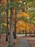 Miller Park Fall Foliage. A walk path is surrounded by fall foliage in Miller Park. Winston-Salem, North Carolina Stock Photography