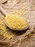 Millet. Royalty Free Stock Images