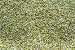 Millet background. Millet or til background, millet oil is considered good for food and ayurvedic cure stock images