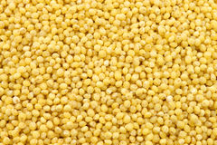 Millet background Royalty Free Stock Photography