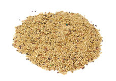 Millet birdseed in a round shape on white stock image