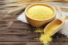 Millet in a bowl and wheat ears Stock Image