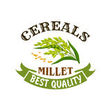Millet cereal vector poster or emblem Stock Photo