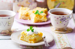Millet and dried apricot  pudding Royalty Free Stock Photos