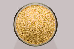 Millet grain Stock Photography