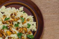 Millet groats with chanterelle, girole fungus and parsley Stock Photos