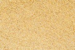 Millet groats Stock Photos