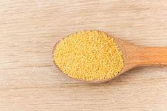 Millet groats Stock Photography