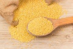 Millet groats Royalty Free Stock Photos