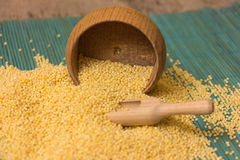 Millet groats Royalty Free Stock Image