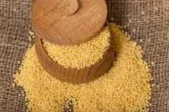 Millet groats in wooden pot Stock Images