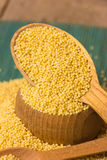 Millet groats Royalty Free Stock Photo