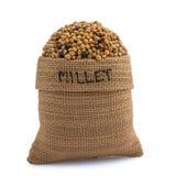 Millet Stock Image