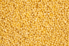 Millet Stock Image