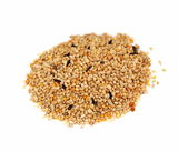 Millet isolated on white background Royalty Free Stock Image