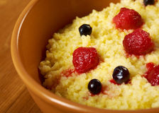Millet porridge with berry Royalty Free Stock Image