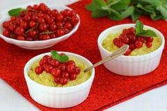 Millet porridge. Bowl with fresh berries . Shallow DOF stock photos
