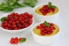 Millet porridge. Bowl with fresh berries . Shallow DOF stock image