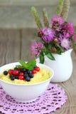 Millet porridge. Bowl with fresh berries . Shallow DOF royalty free stock images