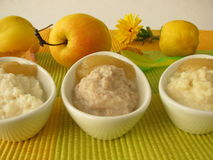 Millet porridge, creamed rice and spelt mash Stock Photography