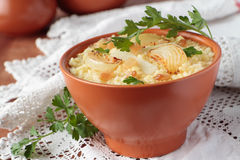 Millet porridge and fat and onions Royalty Free Stock Photos