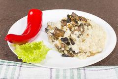 Millet porridge with mushrooms Stock Photography