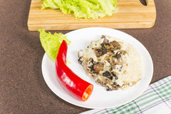 Millet porridge with mushrooms Royalty Free Stock Photography