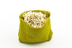 Millet rice  in green sisal sack on white background Royalty Free Stock Photography