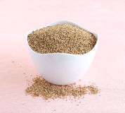 Millet sain de Kodo de nourriture Photo stock