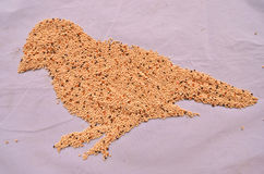 Millet seed for bird feeding Royalty Free Stock Image