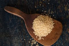 Millet seeds on a wooden paddle. Directly above a wood paddle with a heap of millet seeds royalty free stock photography