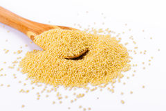 Millet in a wooden spoon Royalty Free Stock Photo