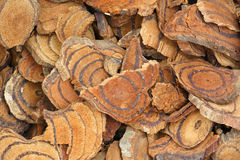 Millettia slice Stock Photos