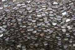 Milliers de pièces de monnaie dans un arbre images libres de droits