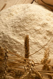Milling wheat Stock Image